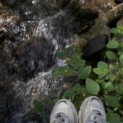 Shoes on slippery rocks