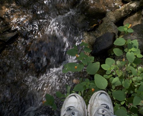 Shoes on slippery rocks